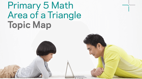 P5 Topic Map: Area of a Triangle