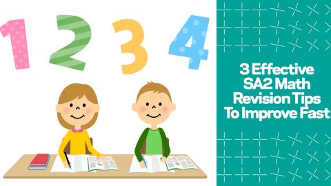 3 Effective SA2 Math Revision Tips To Improve Fast